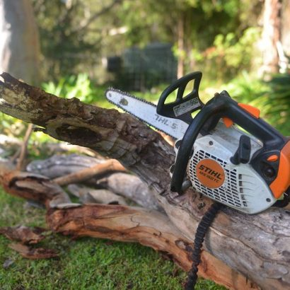 chainsaw and chopped trees by priority trees